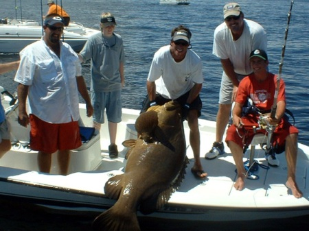 goliath grouper-florida ligth tackle charters