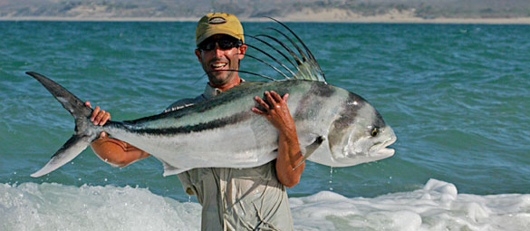 301 moved permanently for Rooster fish cabo